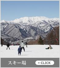 banner_m_ski